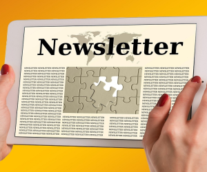 Guidelines for newsletter contributions Article