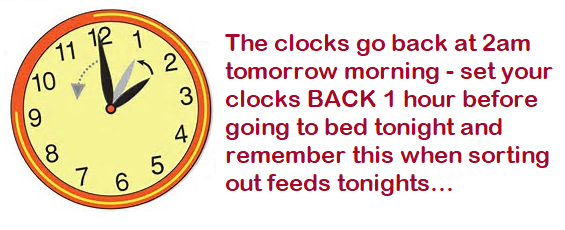 clocks-back.png